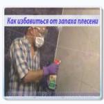 как избавиться от запаха плесени