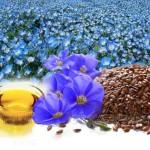 Как-правильно-принимать-семена-льна-при-похудении